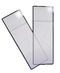 SC Microscope Slides (50pcs)