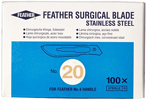 Feather Surgical Blades (100pcs)