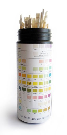 10 Parameter Urine Test Strips 100pcs