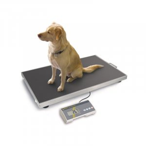 Kern Veterinary Floor Scale